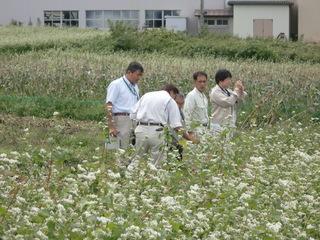 県農政部立会.JPG